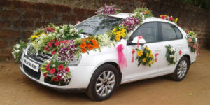 wedding cars 5 300x150 - 3 Reasons for Getting Professional Stump Removal Services